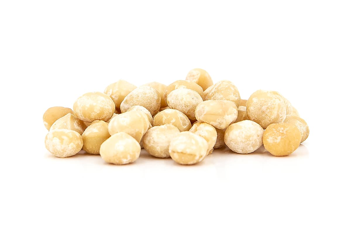 Macadamias geröstet & gesalzen